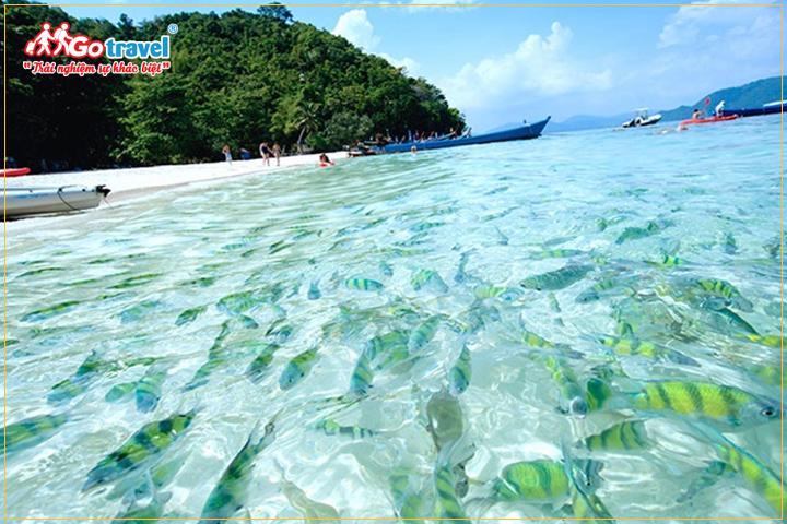 du lịch Thái Lan - tham quan đảo Carol