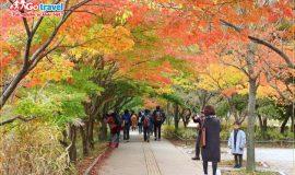 Du lịch Hàn Quốc tháng 10 cần chuẩn bị những gì?